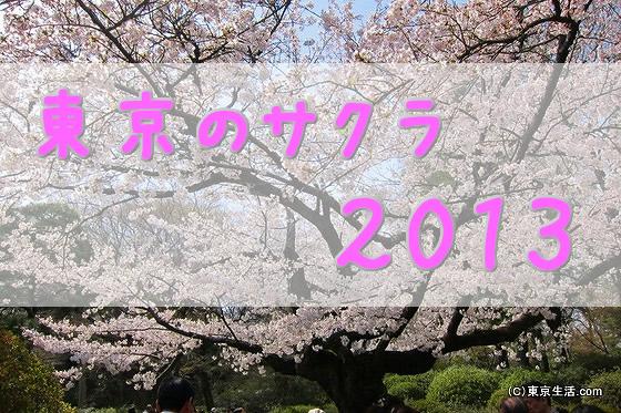 花見実況|東京の桜の名所 2013年の画像