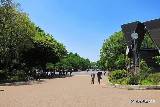 上野公園内のカフェ