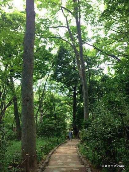 緑豊かな有栖川宮記念公園