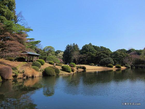 新宿御苑の日本庭園