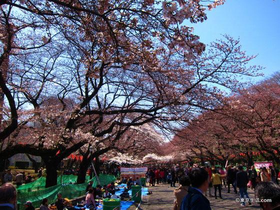 混雑する上野公園