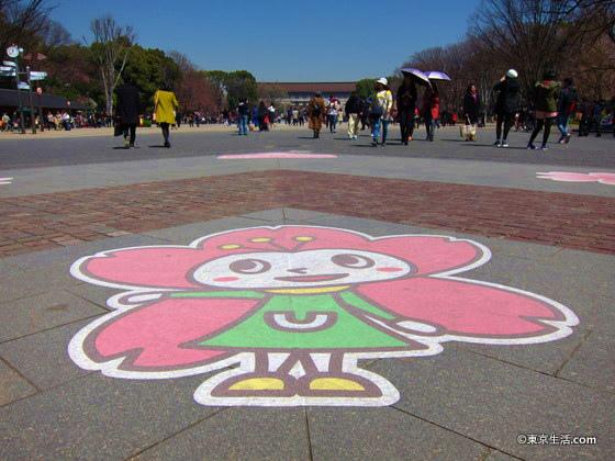 穴場の東京国立は物館の桜