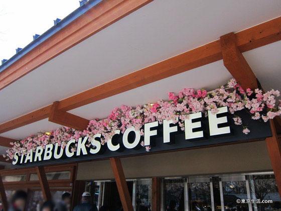 上野のスターバックスの桜