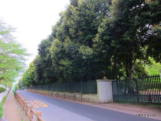 馬事公苑の塀