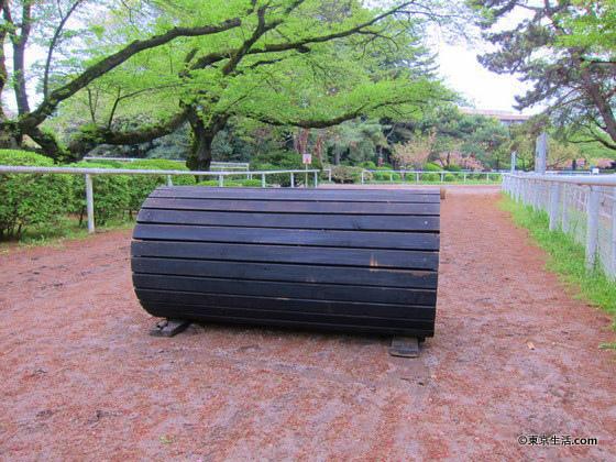 馬事公苑の障害物