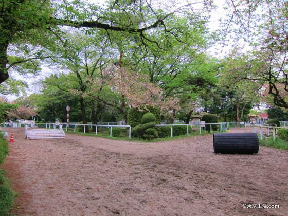 馬事公苑の園内