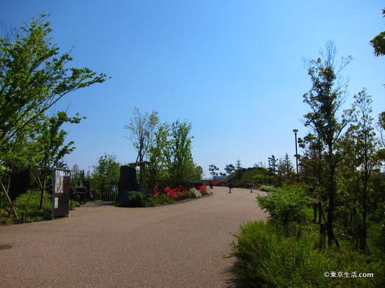 夏の二子玉川公園