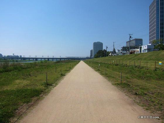 多摩川の遊歩道