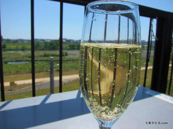 二子玉川の散歩|暑い多摩川と冷たいシャンパンの画像