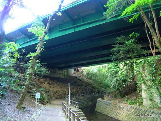 等々力渓谷の橋