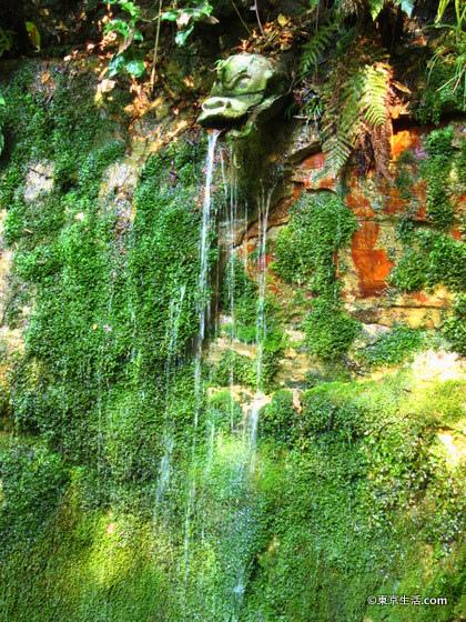等々力渓谷の不動の滝