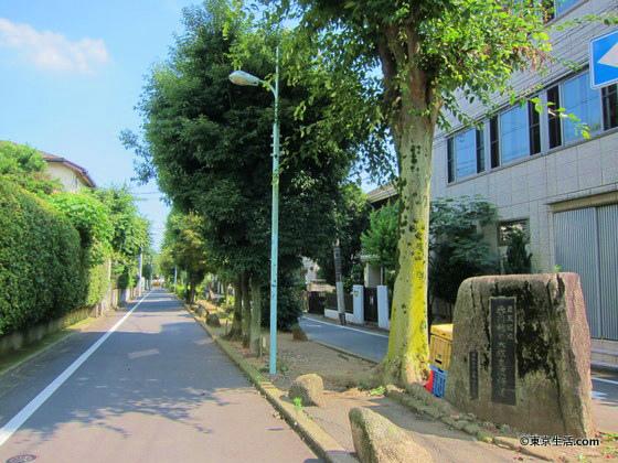 駒沢を散歩