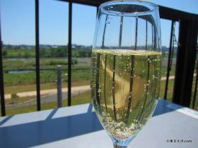 暑い多摩川と冷たいシャンパン|二子玉川の散歩