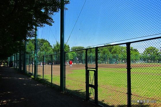 羽根木公園の野球場