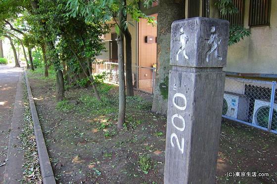 羽根木公園のランニングコース