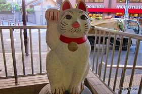 世田谷線と招き猫のたまにゃん|豪徳寺の商店街