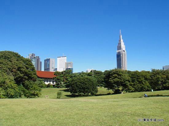 明治神宮と新宿高層ビル街