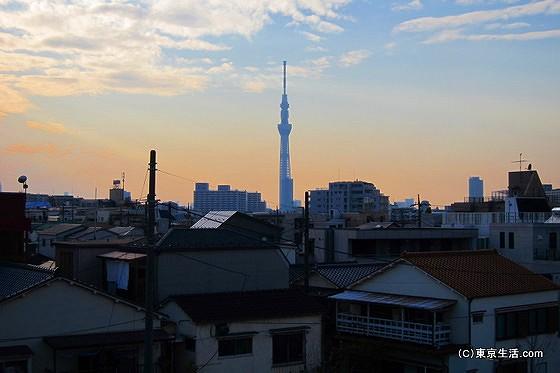 平井から眺める東京スカイツリー