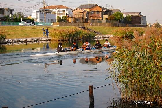 旧中川を走るボート
