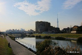 旧中川と荒川の間の江戸川区の街|平井の散歩