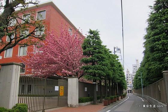 立教大学のキャンパス