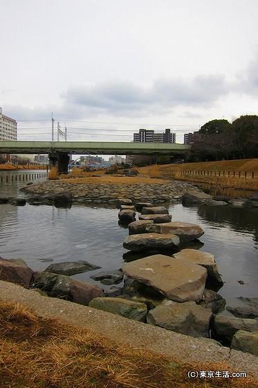 旧中川の岩