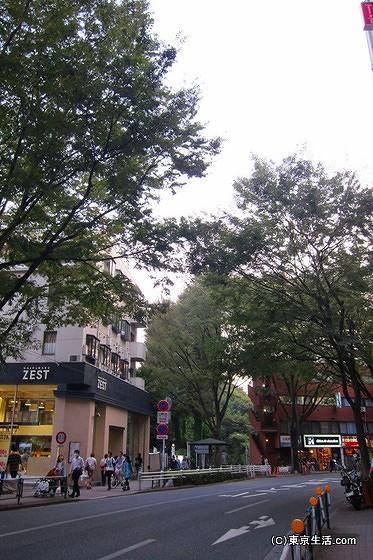 吉祥寺の並木道