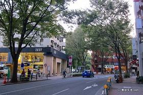 井の頭公園への誘い|吉祥寺の商店街