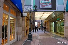 小路とナチュラルな雰囲気|吉祥寺の商店街