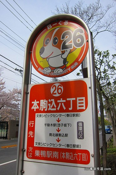 文京区のバス
