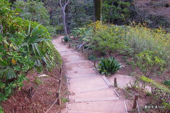 下ると日本庭園