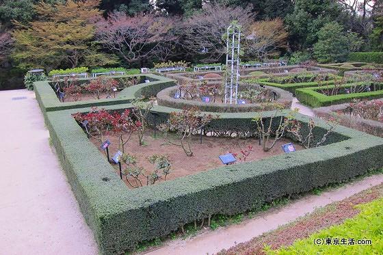旧古河庭園の西洋庭園