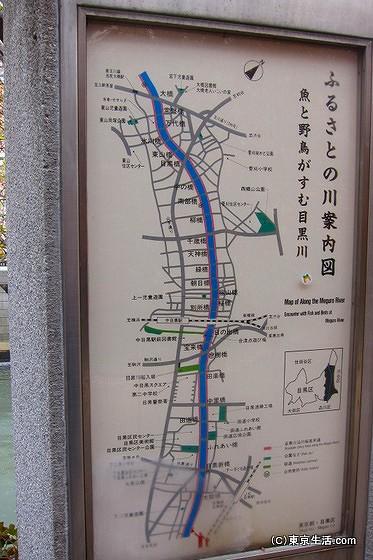 目黒川の散歩道