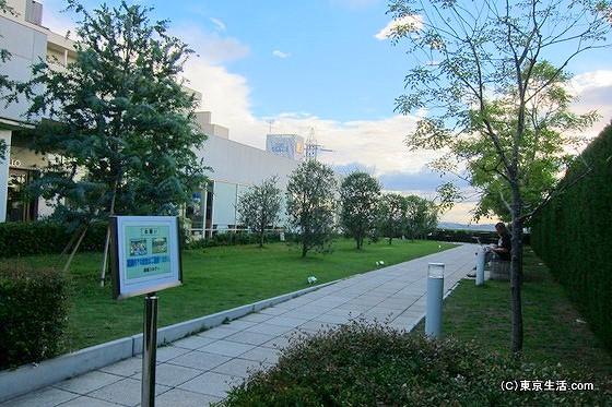 成城コルティオリーブの庭