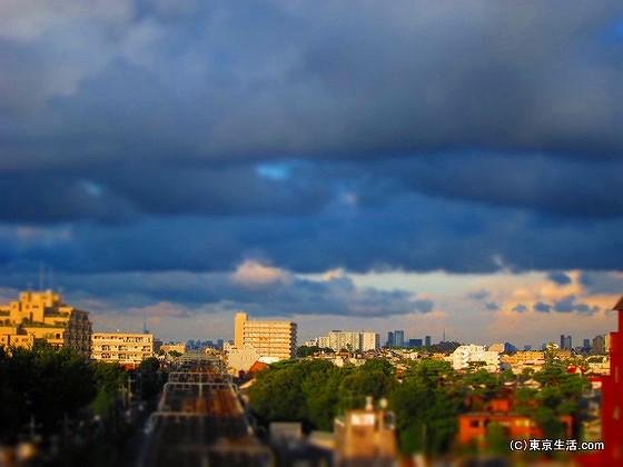 成城から新宿を眺める