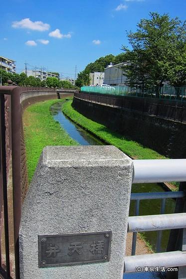 仙川を流れる仙川
