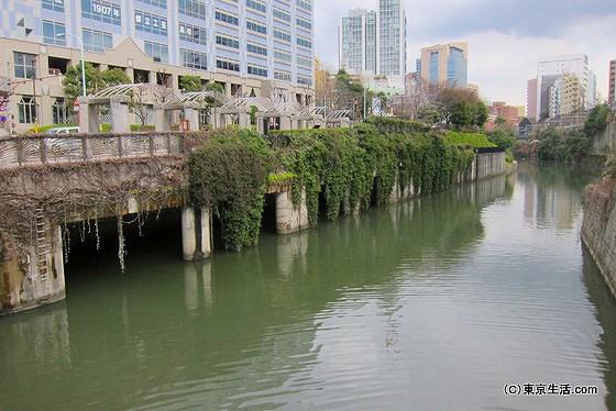 神田川の下流を望む