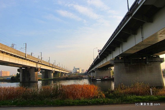 国道17号と新幹線が走る