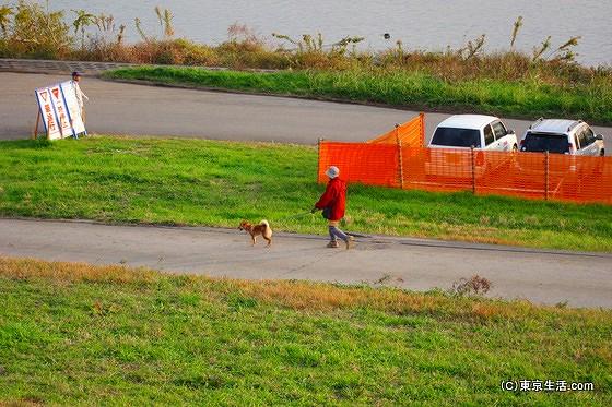 荒川の土手で犬の散歩