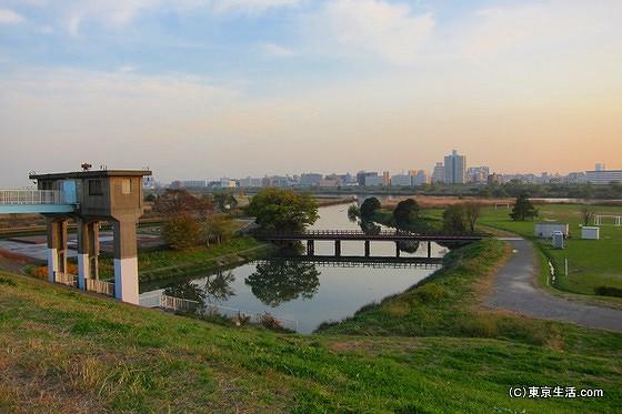 荒川の河川敷
