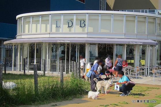 ららぽーと豊洲の犬カフェ
