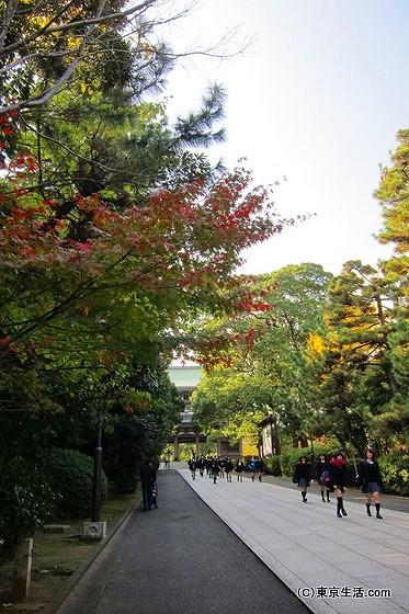 総持寺の山道