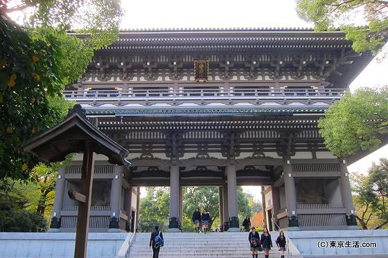 鶴見の巨大パワースポット「總持寺」を散歩|総持寺