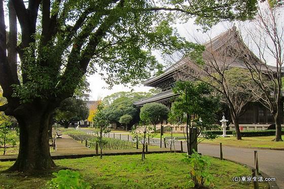 総持寺の伽藍