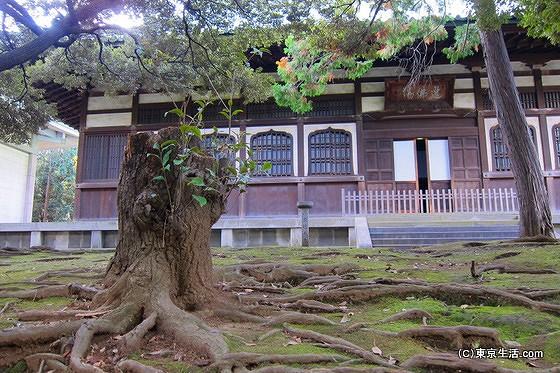 総持寺の大僧堂