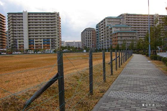 集合住宅の街である浦安