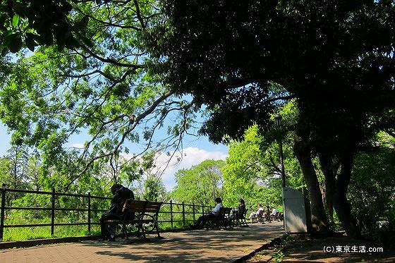 日比谷公園|ビジネス街のオアシス!昼下がりの日比谷公園の画像