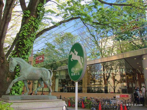 馬事公苑の並木道