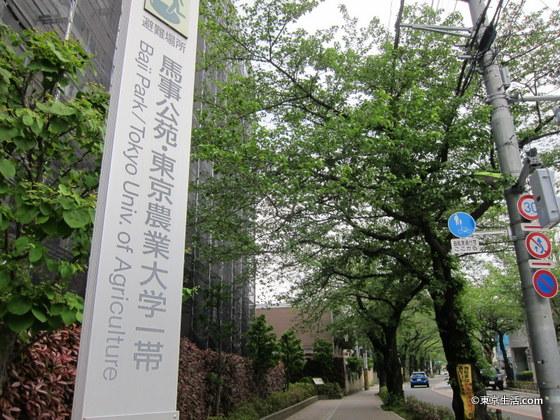 東京農業大学・馬事公苑一帯