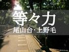 等々力の暮らし - 住みやすい街は? - 東京生活.com